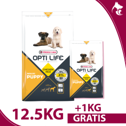 copy of Puppy Maxi 12,5kg