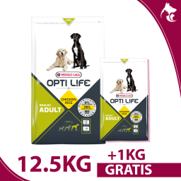 copy of Adult Maxi 12,5kg
