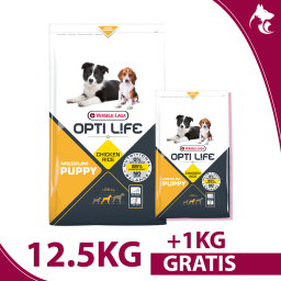 copy of Puppy Medium 12,5kg