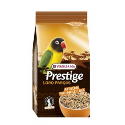 VL-African Parakeet Loro...