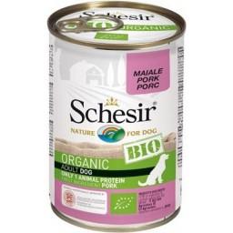 Schesir (pies) - puszka...
